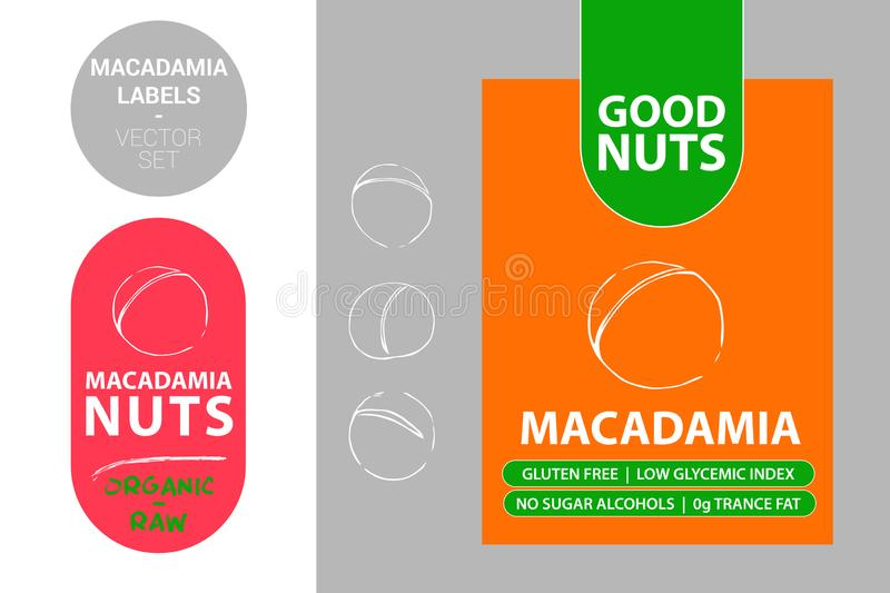 Macadamia  Nut Badge with text: gluten free, low glycemic index, no sugar alcohols, 0g trance fat. Raw organic sticker vector illustration