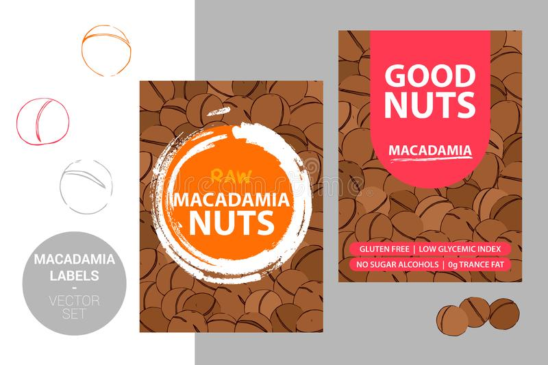 Macadamia nuts labels with brush stroke elements and cartoon drawn nut texture. product Badge stock illustration
