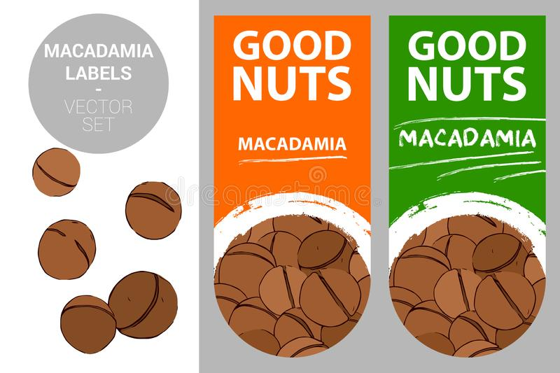 Macadamia nuts product labels in orange and green colors with nut texture and brush stroke drawn creative design elements. royalty free illustration