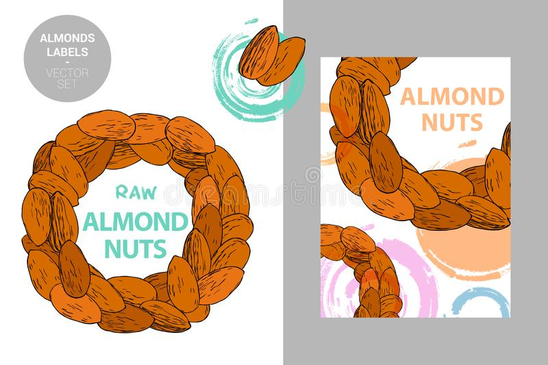 Raw almonds labels. Creative colorful badge with semicircle of nuts. Circle of brown hand drawn almond nuts stock illustration