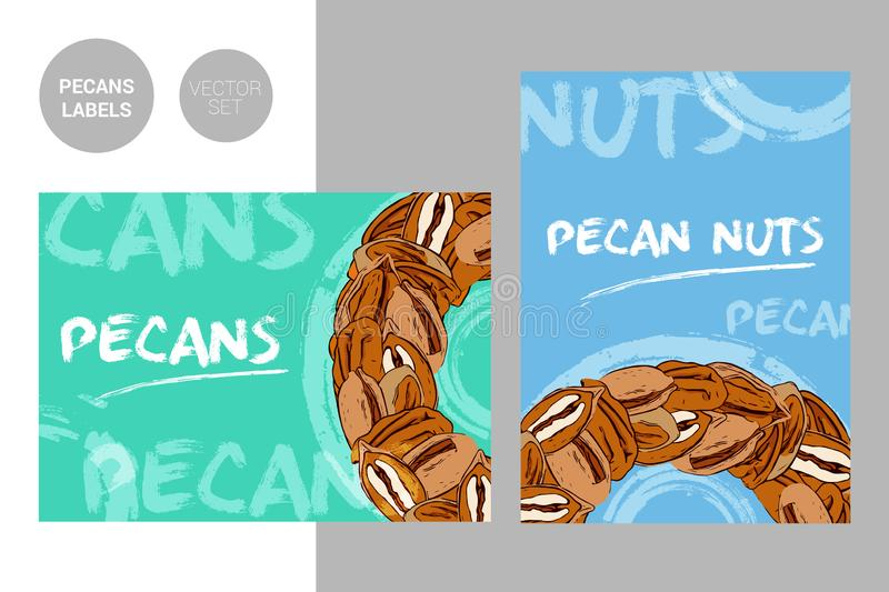 Creative colorful pecan nuts labels with hand drawn typography and brush stroke elements. Semicircle of pecans royalty free stock photo