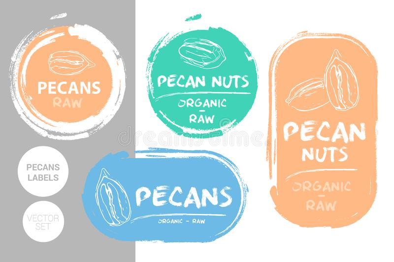 Pecan nuts colorful label set. Raw organic pecans Badge shapes. Creative Nut tags. Raw food stickers royalty free illustration