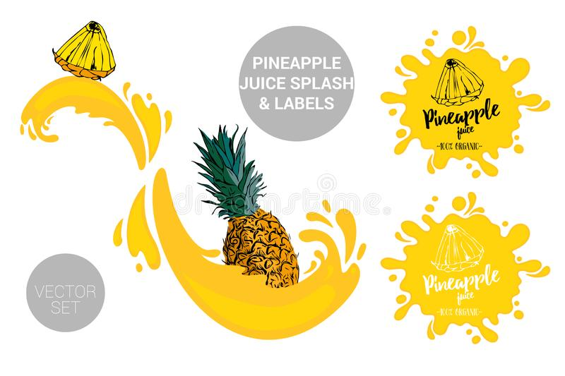Pineapple on juice splashes. Organic fruit labels tags and pineapple juice text. Colorful tropical fruit stickers. vector illustration