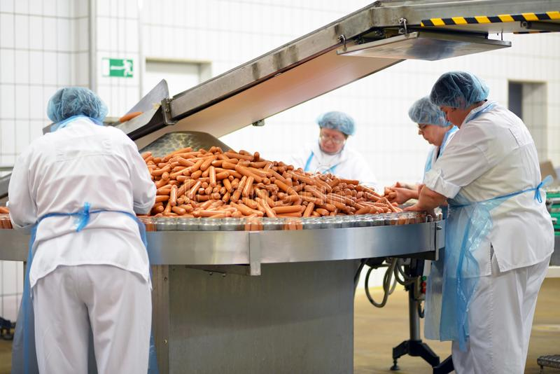 Food industry: workers in the production of original German brat. Wurst in a large butcher`s shop stock photo