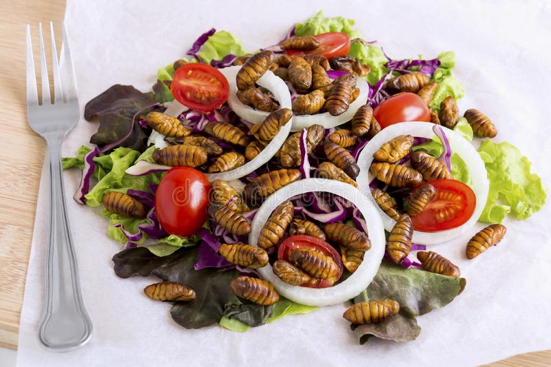 Food Insects: Fried worm insect or Chrysalis silkworm for eating as food items in salad vegetable on wood background, it is good stock photography