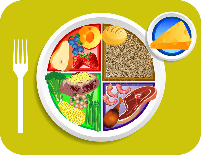Food My Plate Dinner Portions stock illustration