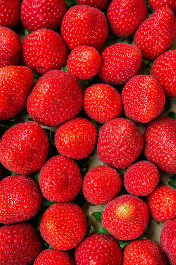 Food Pattern Ripe Organic Summer Strawberries in Cardboard Box at Farmer`s Market Vibrant Colors stock photography