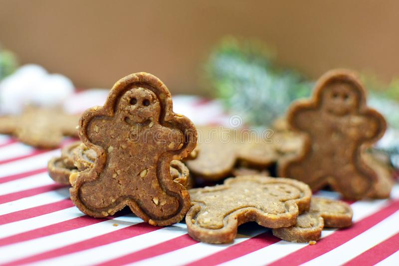 Food phpotography of brown gingerbread man christmas cookies with nuts. Food photography of brown gingerbread man christmas cookies with nuts arranged on festive royalty free stock images