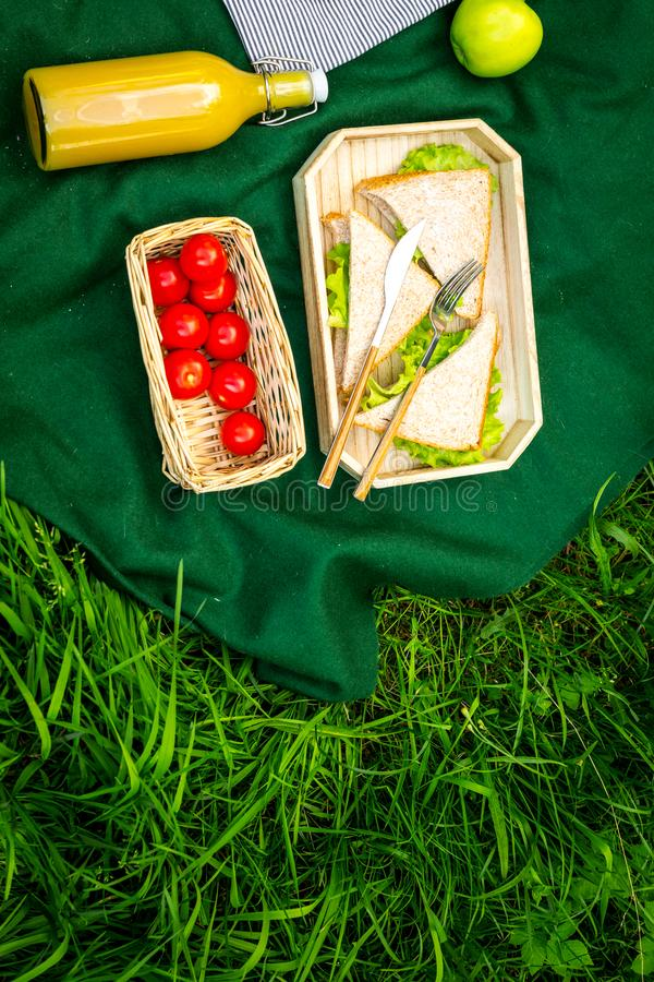 Food for picnic on tablecloth on green grass. Meal outdoor concept. Sandwiches, vegetables, drinks top view copy space royalty free stock photos