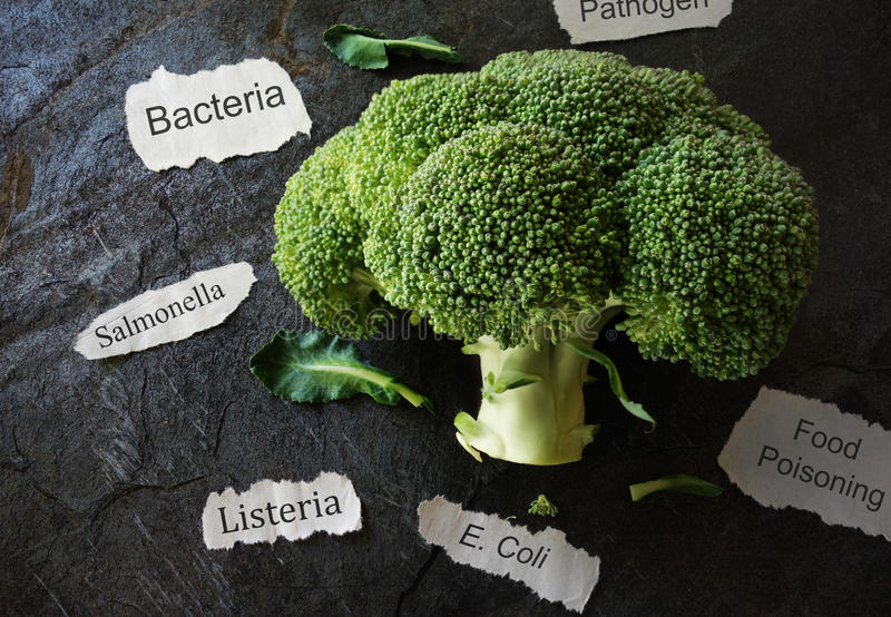 Food poisoning concept. Broccoli with various food poisoning related labels stock image
