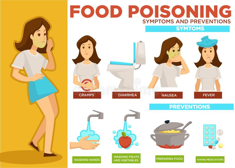 Food poisoning symptoms and prevention poster text vector royalty free illustration