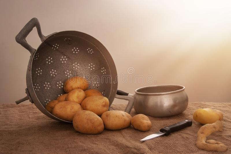 Food preparation, peeled potatoes in farmhouse rustic setting still life with saucepan, collander, knife, hessian aka. Food preparation, peeled potatoes in a royalty free stock images