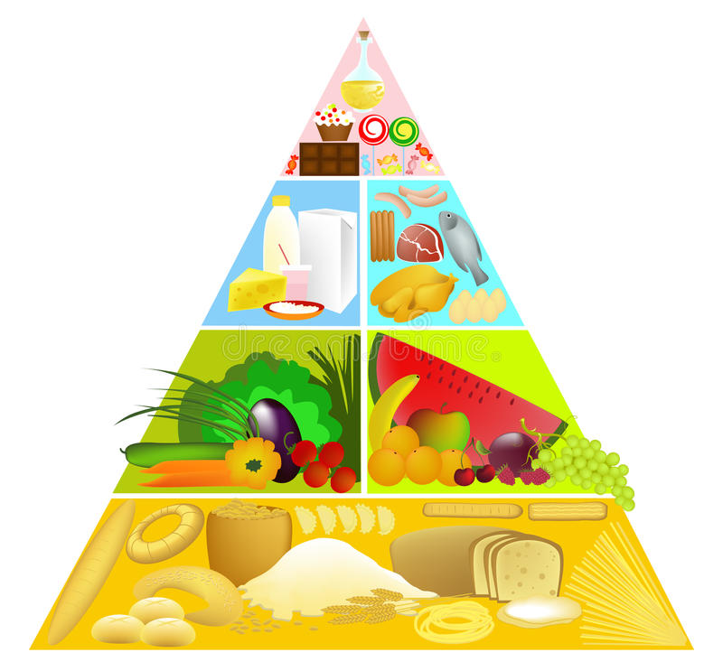 Download Food pyramid stock vector. Image of paprika, cream, cheese - 12426948