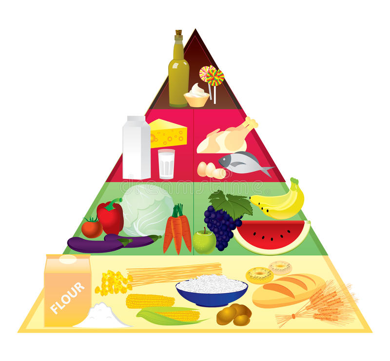 Download Food pyramid stock vector. Image of bread, cheese, apple - 16826523