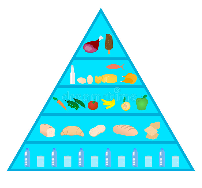 Download Food  pyramid stock vector. Image of calcium, calorie - 8650748