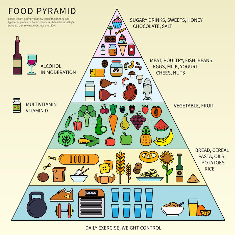 Food pyramid with five levels. Thin line flat design of the pyramid of healthy eating consisting of five levels. Recommendations for a healthy lifestyle, Icons royalty free illustration