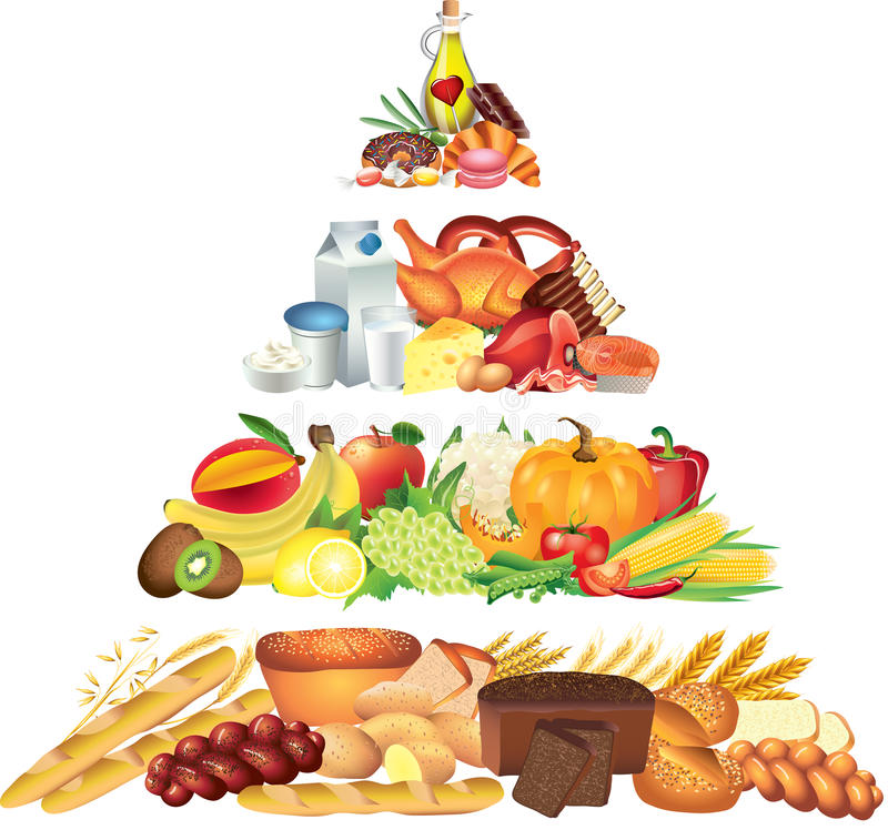 Food pyramid photo realistic illustration. Food pyramid photo realistic detailed illustration vector illustration