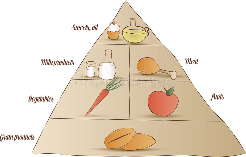 Download Food pyramid stock vector. Image of grains, calories - 32905469