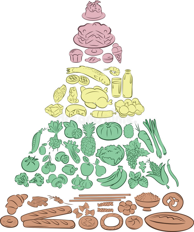 Food Pyramid. Vector illustration of Food Pyramid showing the main Food Groups stock illustration