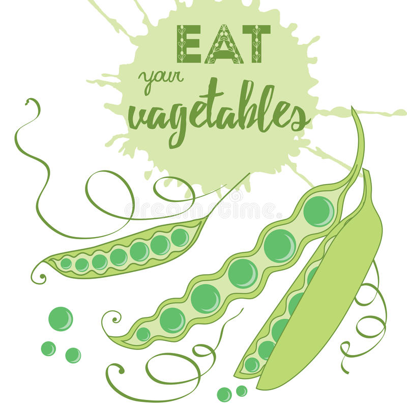 Food quotes. Eat your vegetables. Healthy organic product. royalty free illustration