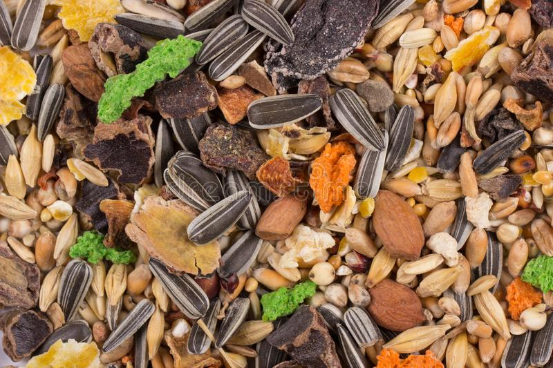 Food for rodents. Healthy food background, texture. Food of dry compound for hamsters, rats, chinchillas, mice, squirrels. stock photos
