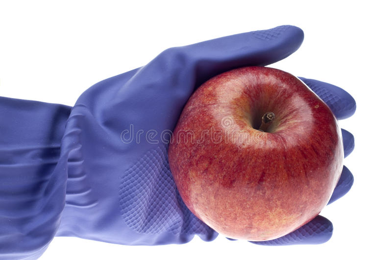 Food Safety Concept. With Gloved Hand Holding Food. Isolated on White stock photo