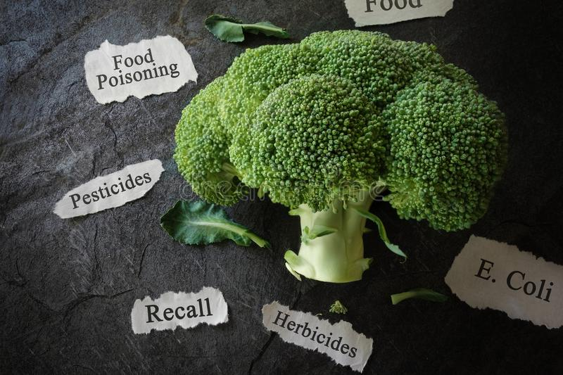 Food safety concept. Broccoli with various food safety related news headlines stock images