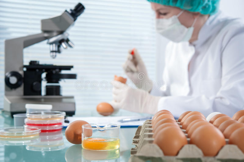 Food safety concept royalty free stock photography