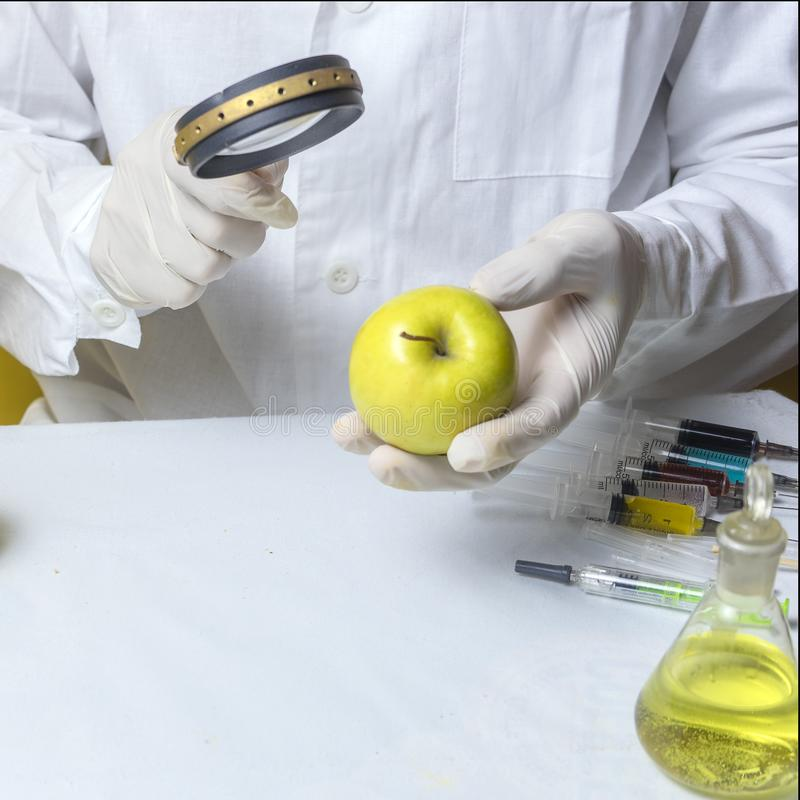 Food safety inspector testing fruit from the market.  royalty free stock image