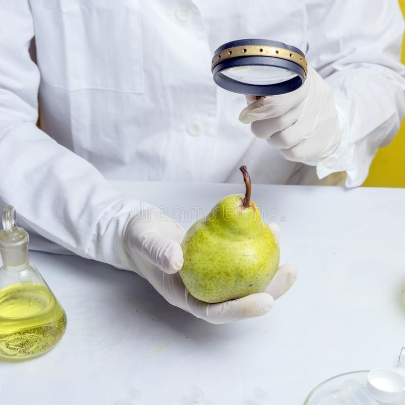 Food safety inspector testing fruit from the market. Close up stock photography