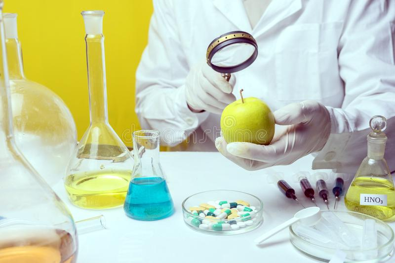 Food safety inspector testing fruit from the market.  royalty free stock photos