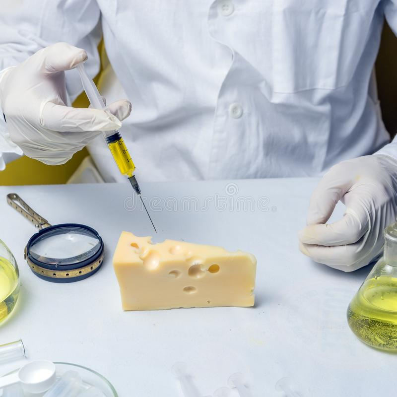 Food safety laboratory procedure, lab assistant makes a shot in the cheese. Close up royalty free stock photography