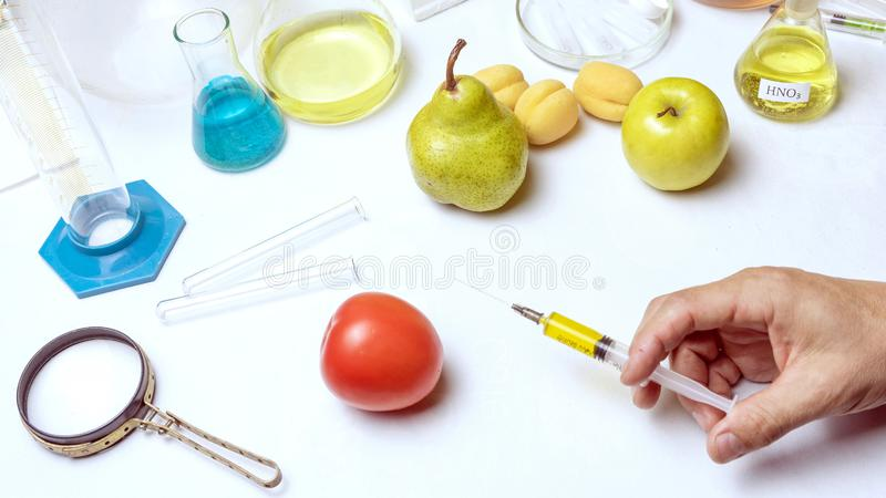 Food safety laboratory procedure, lab assistant makes a shot in the tomato. Close up stock image