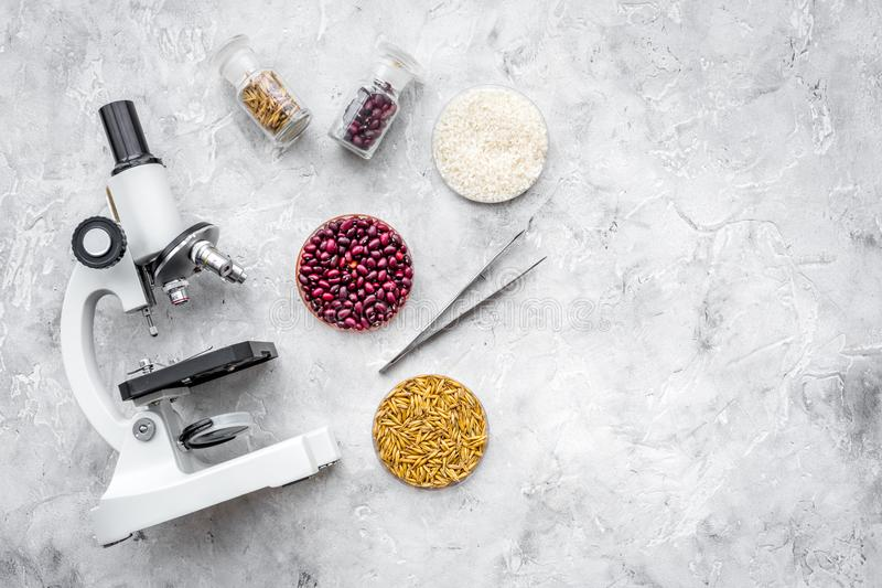 Food safety. Wheat, rice and red beans near microscope on grey background top view copy space. Food safety. Wheat, rice and red beans near microscope on grey stock image