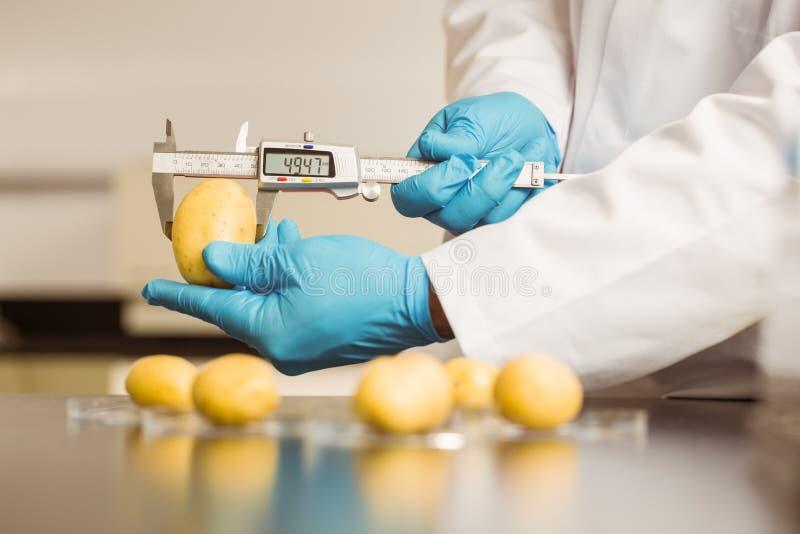 food scientist