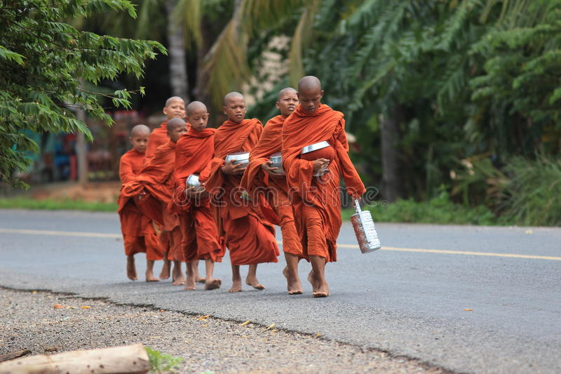 Food searching buddhist monks, Cambodia stock photography