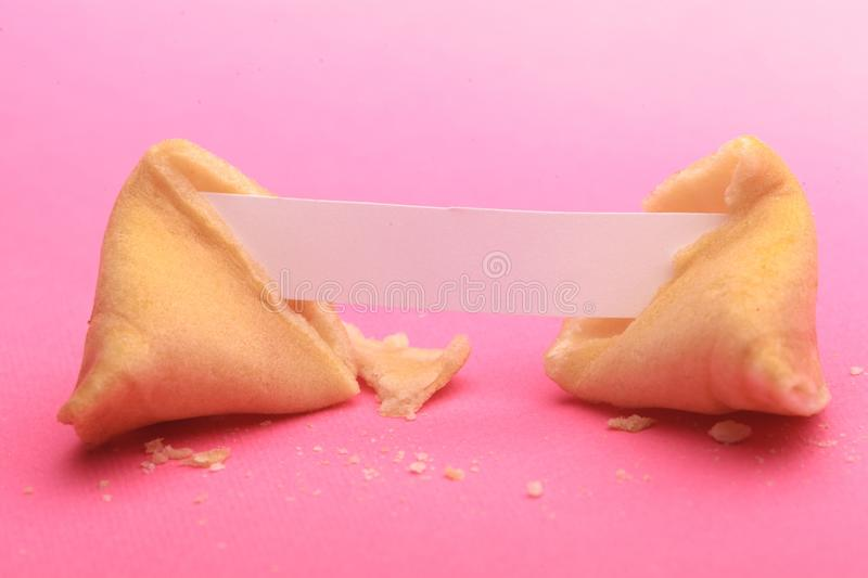Broken Fortune Cookie with Blank Piece of Paper royalty free stock photography