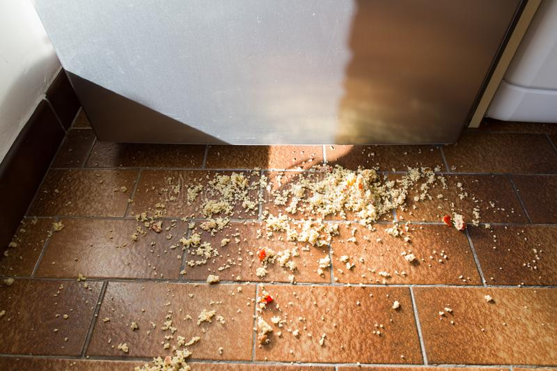 Food spilled on the kitchen floor. In front of the fridge stock photography