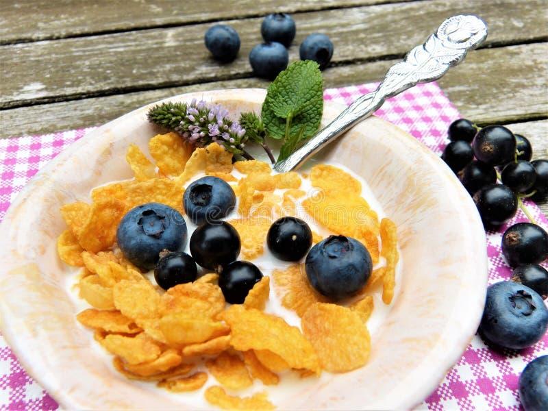 Food, Vegetarian Food, Dish, Dessert stock image