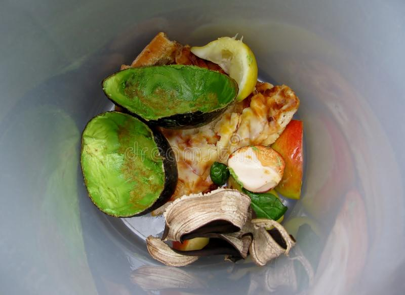Food waste and scraps. At the bottom of plastic container for recycling royalty free stock photography