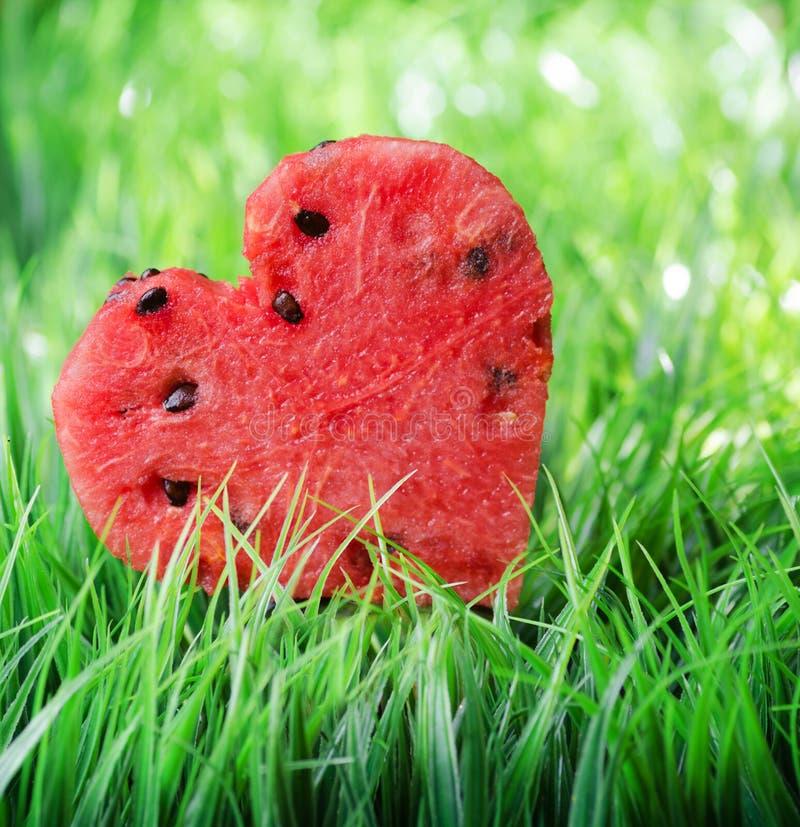 Watermelon heart on green grass. Valentine concept stock photo