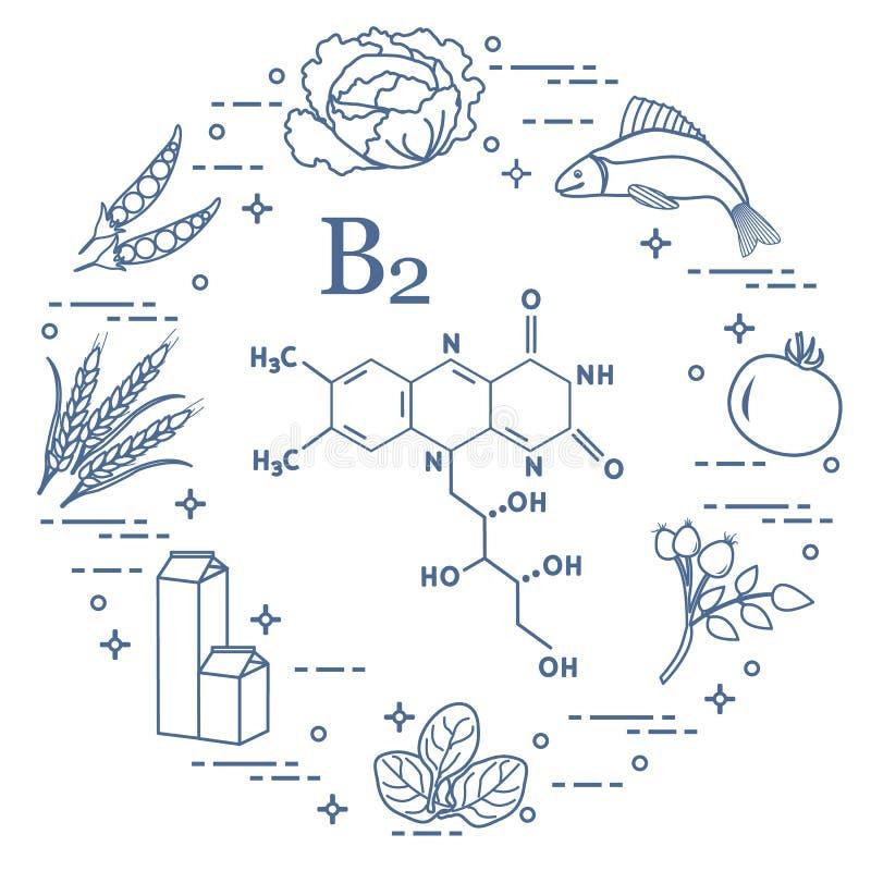 Foods bogaci w witaminie B2 Ryba, grochy i inny, ilustracja wektor