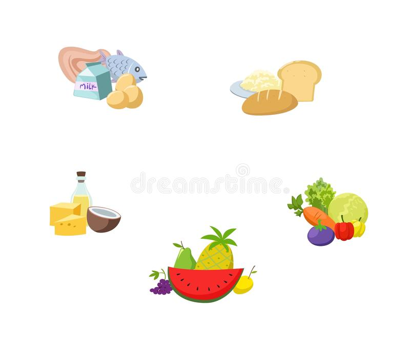 Foods that are essential to the body, complete with nutrients vector illustration