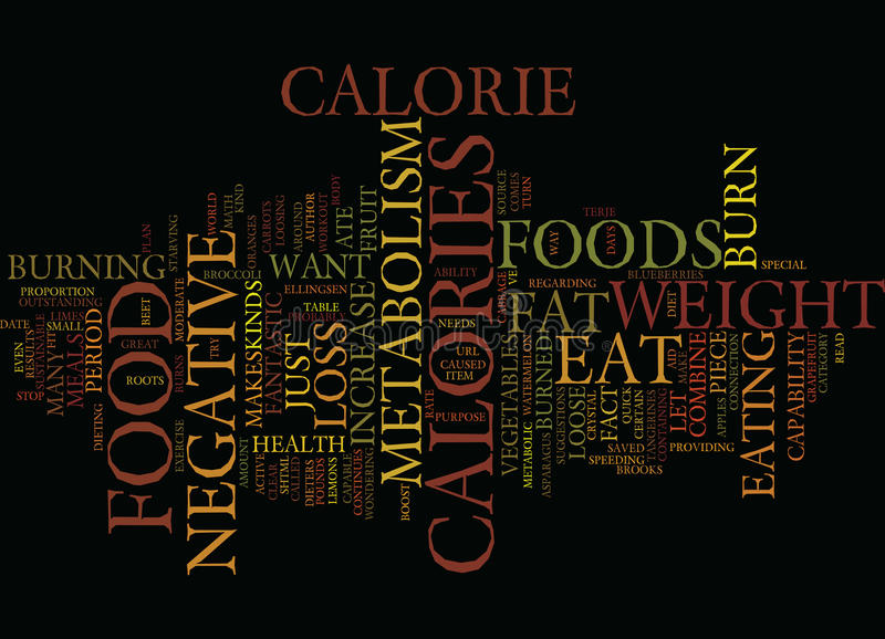 Foods That Increase Your Fat Metabolism Text Background Word Cloud Concept vector illustration