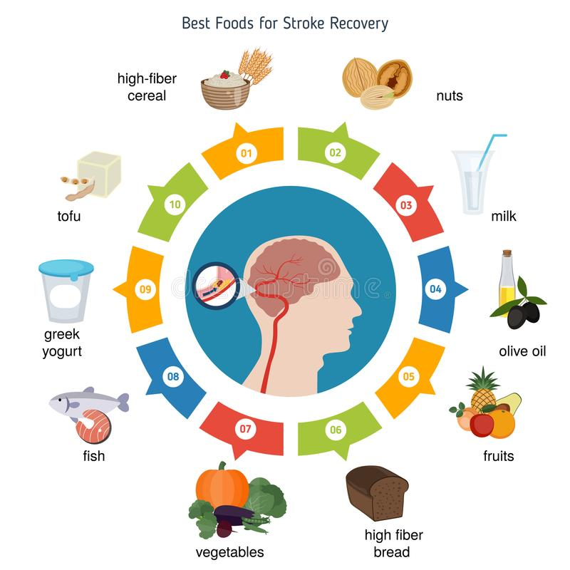 Best foods for stroke recovery royalty free illustration