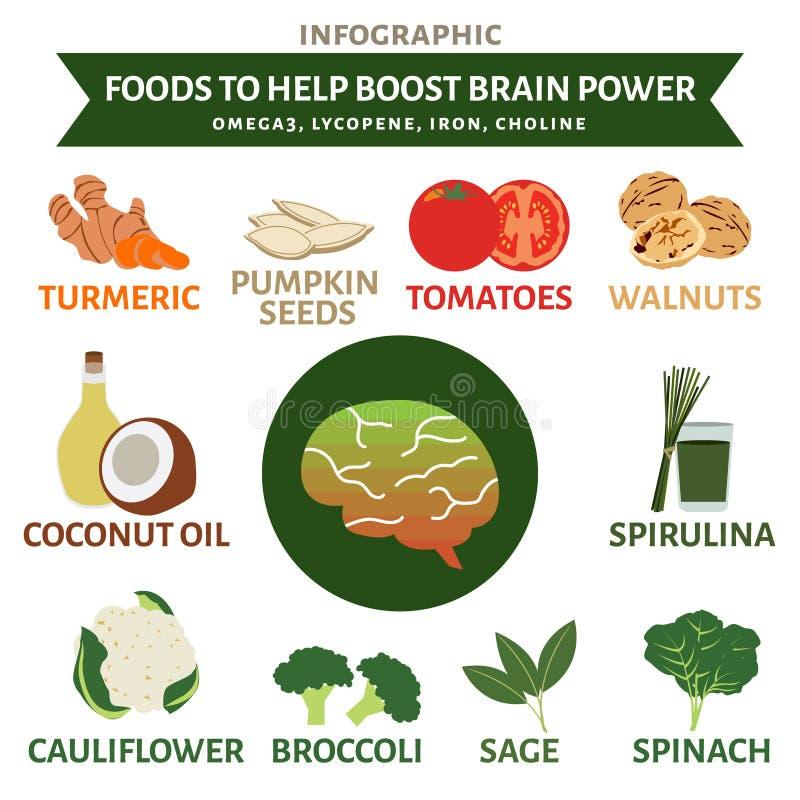Foods pomagać podnosić móżdżkową władzę infographic, warzywa i owoc, ilustracji