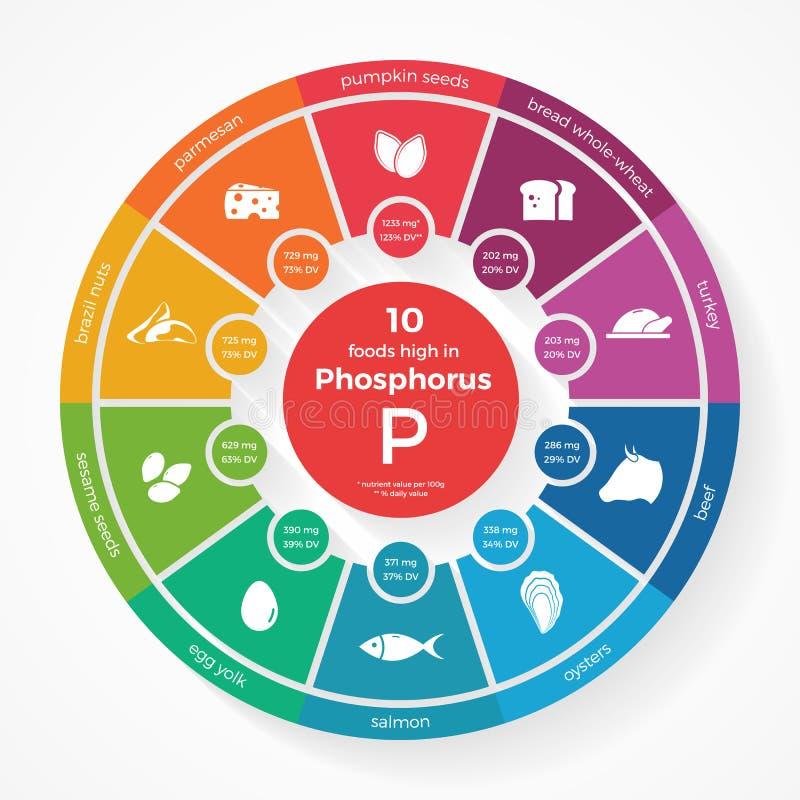 10 foods wysokich w fosforze ilustracji