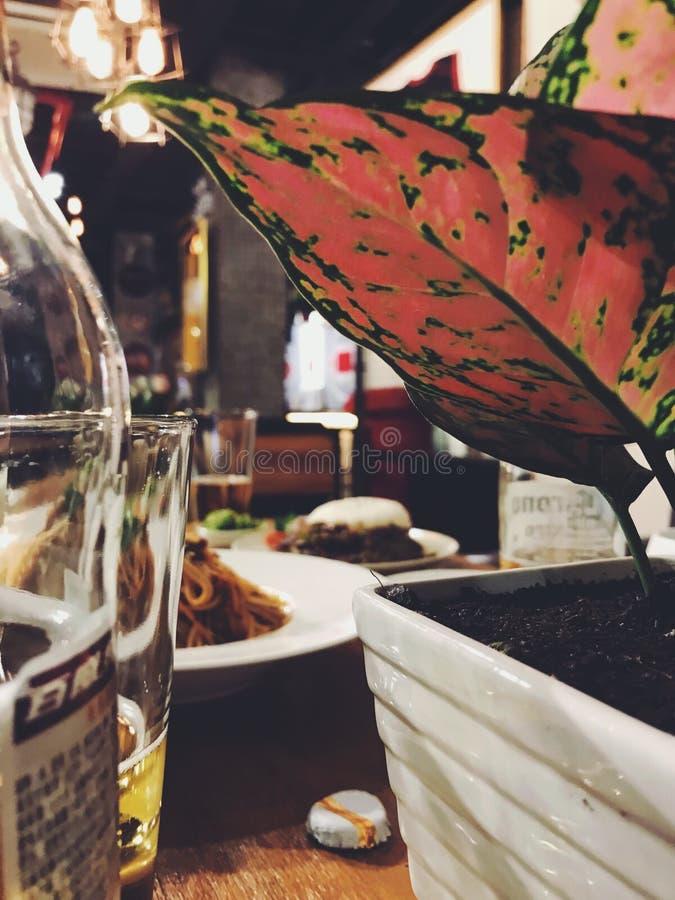 foods z roślinami fotografia stock