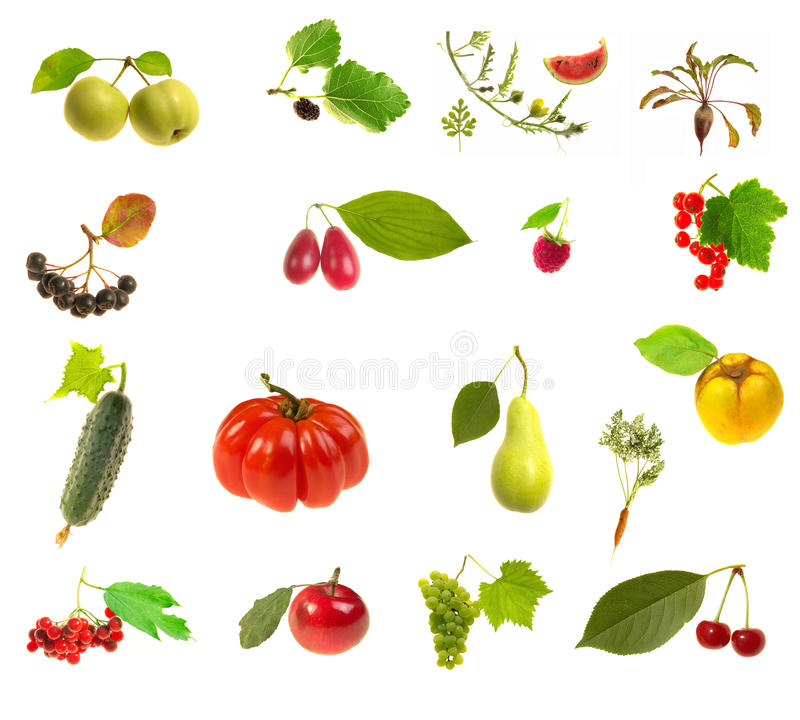 Foodstuff. On a white background royalty free stock photos