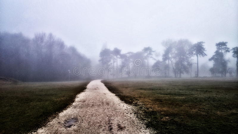 Foog w parku z effekt fotografia stock